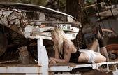 The scrapyard — Stock Photo