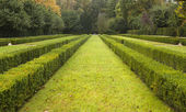 Serralves Garden in Porto — Stock Photo