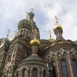 The Church of the Savior on Spilled Blood - Foto Stock