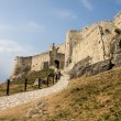 Stock Photo: Spis Castle in Slovakia