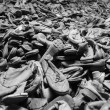 Auschwitz — Stock Photo #31037575