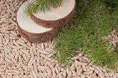 Pellets- biomass — 图库照片