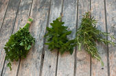 Spices- parsley,mint, rosemary — Stock Photo