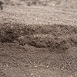 Stock Photo: Soil- color image