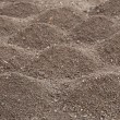 Stock Photo: Soil- photography