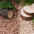 Pine and oak pellets - Photo