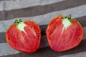 Tomate verde — Fotografia Stock