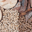 Stock Photo: Biomass