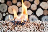 Pellets-Biomass — Stock Photo