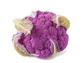Purple cauliflower — Stock Photo