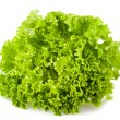 Frisee salad — Stock Photo