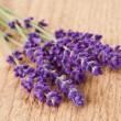 Lavender flowers — Stock Photo #28822817