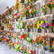 Graves with flowers on a wall of a European cemetery — Stock Photo