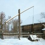 Village well-crane — Stock Photo #19149747