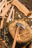 Axe on chopping block — Stock Photo