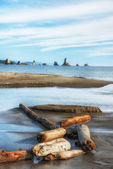 Beach 3, olympic national park, washington state — Stock Photo