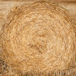 Straw crop — Stock Photo