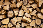 Wood cut — Stock Photo