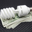 Bulb of low consumption — Stock Photo #25355267