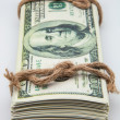 Dollar tied with a rope — Stock Photo