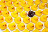 Gum ducks yellow — Stock Photo