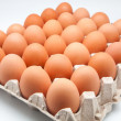 Stock Photo: Thirty eggs