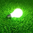 Energy saving light bulb — Stock Photo #12569039