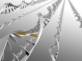 DNA Strands — Stock Photo