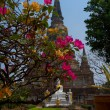Temple at Wat Phra Si Sanphet - Stock Photo