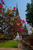 Temple at Wat Phra Si Sanphet — Stock Photo