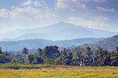 Norden von thailand — Stockfoto