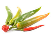 Green chili peppers and scotch bonnet — Stock Photo