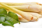 Lemongrass and kaffir lime — Stock Photo