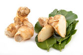 Galangal root, kaffir lime leaves — Stock Photo