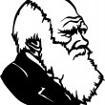 Постер, плакат: Charles Darwin