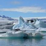 glaciären lagunen — Stockfoto