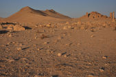 Palmyra and desert — Stock Photo