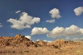 Солнечный день, полупустынных — Стоковое фото