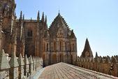 Catedral de salamanca — Foto de Stock