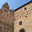 Patrimony of Salamanca — Stock Photo