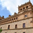 The Monterrey Palace of Salamanca — Stock Photo