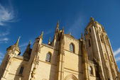 Cathedral of Segovia(Spain) — Stock Photo