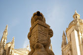 Detail of the Cathedral of Segovia(Spain) — Stock Photo