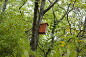 Birdhouse in the forest — Stock Photo