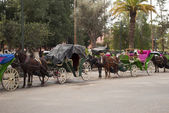 Carriage in Marrakech (Morocco) — Stock Photo