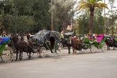 Carriage in Marrakech (Morocco) — Stock Photo