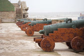 Cannons in the fortress in Essaouira — Stock Photo