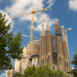 Sagrada Familia in barcelona — Stock Photo #29642193