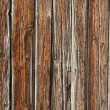 Stock Photo: Wood background and design element