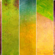 Earthy background image and design element — Stock Photo